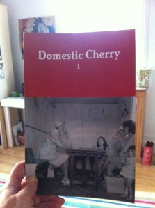 Domestic Cherry