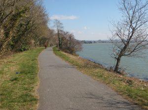 Cycling along the Tarka Trail.