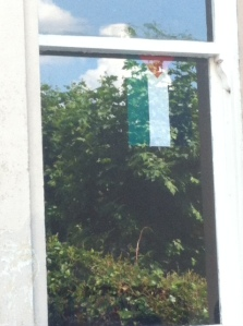 flag in window