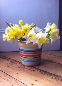 daffs in vase 2015