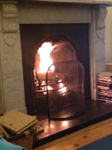first fire 2015