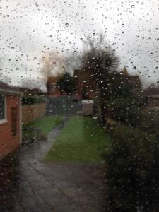 February rain 2016