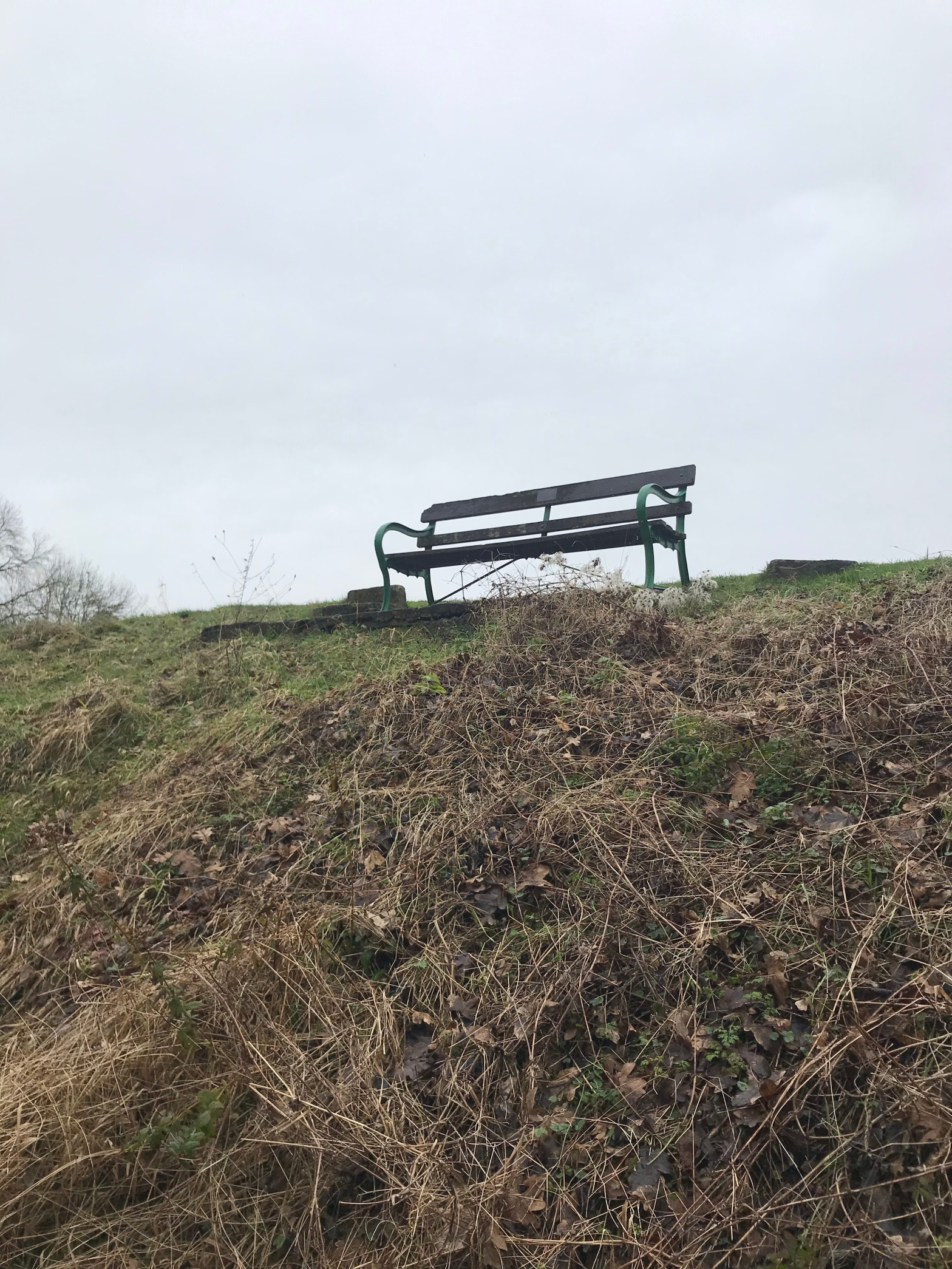 the image is of a bench on sparse land in the middle of winter